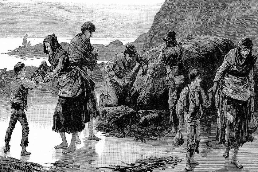 ম্যালথুসের জনসংখ্যাতত্ত্ব : বিজ্ঞানের ইতিহাসে এক আশ্চর্য প্রহেলিকা